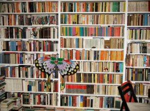 Anneberth Lux - Book Shelf